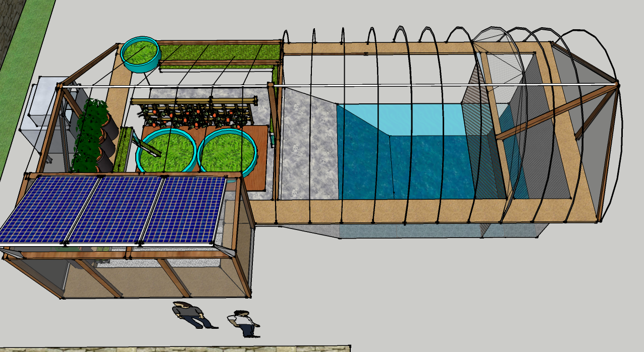 Garden pool facts garden pool for Garden pool aquaponics