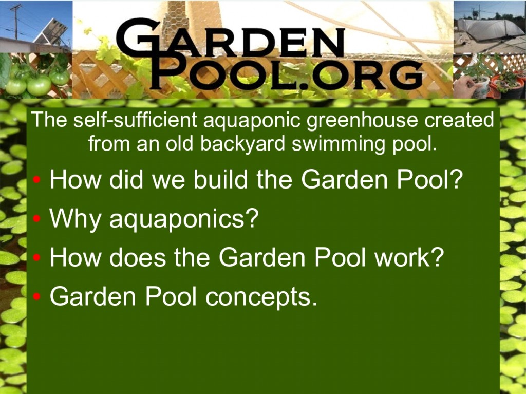 The garden pool story garden pool at gangplank garden pool for Garden pool haiti