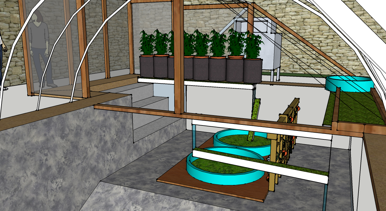 Designing aquaponic systems with sketchup garden pool for Garden pool aquaponics