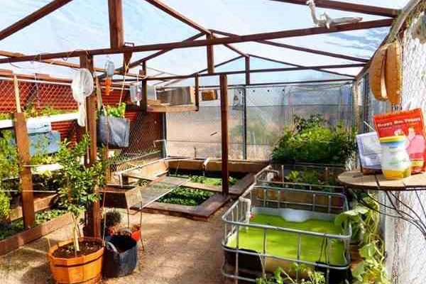 Garden Pool An International Public Charity For Sustainable Food